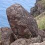 Petroglyfen bij Orongo, overblijfsel van de vogelmens cultuur
