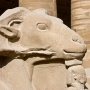 Rammenkop, Karnak