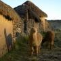 Woonhuis op de Altiplano