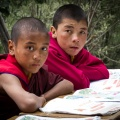 Jonge monniken in Lamayuru