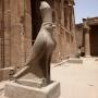 Horus bewaakt de tempel van Edfu